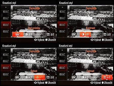 LCD: tvůrčí styly - černobílé podání