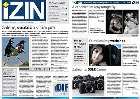 iZIN IDIF 6/2013