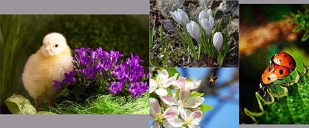 Velikonoce, slunce, jaro a vy: Výsledky