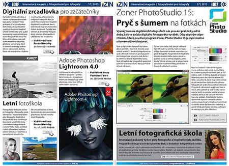 iZIN IDIF 17/13