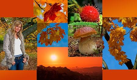 Podzim barevně i černobíle - fotosoutěž