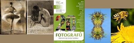 Galerie WWG.CZ vystavuje VI
