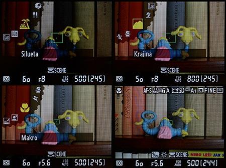 Nikon D610 - scénické či motivové programy