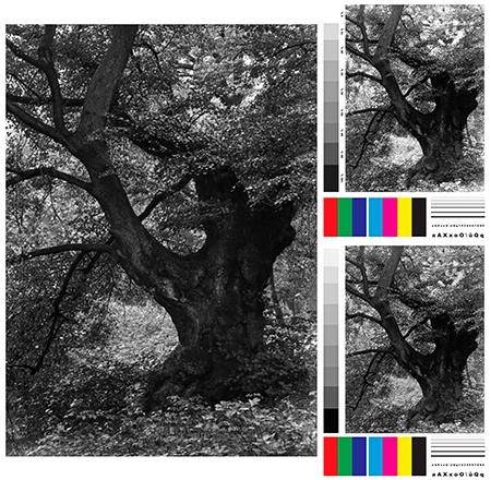 35mm čb negativ + následně testovací obrazec A4