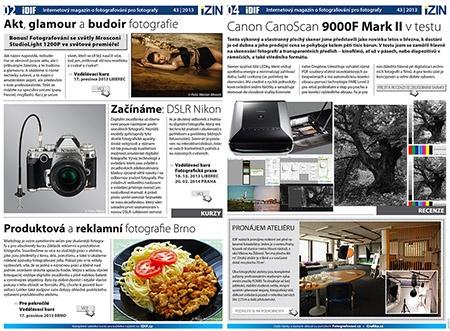 iZIN IDIF 43/13